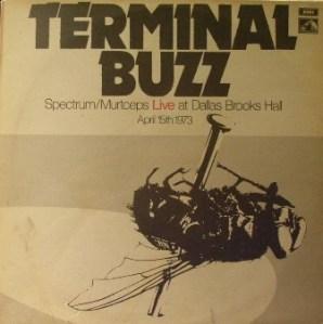 Spectrum_TerminalBuzzTSL0668